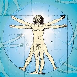 El cuerpo humano, un sistema complejo