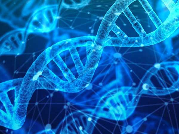 Los estudios genéticos prometen un camino mejor para el tratamiento de las adicciones