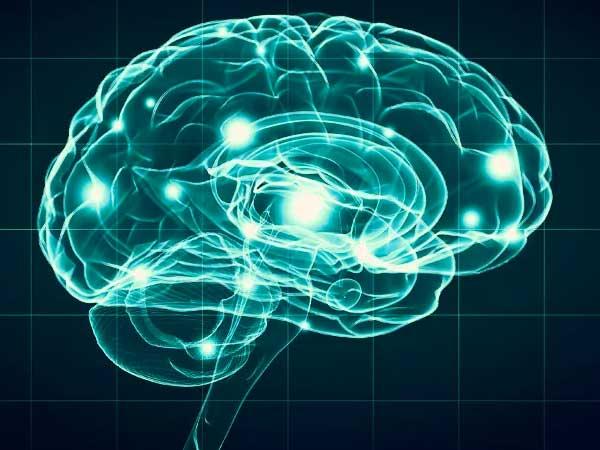La neuropsicologia del miedo y la ira
