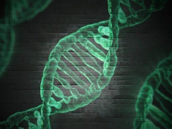 Identifican el gen responsable de la esquizofrenia tras 18 años de estudios