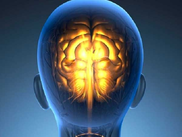 Cómo afecta el aislamiento social y obligatorio a nuestro cerebro