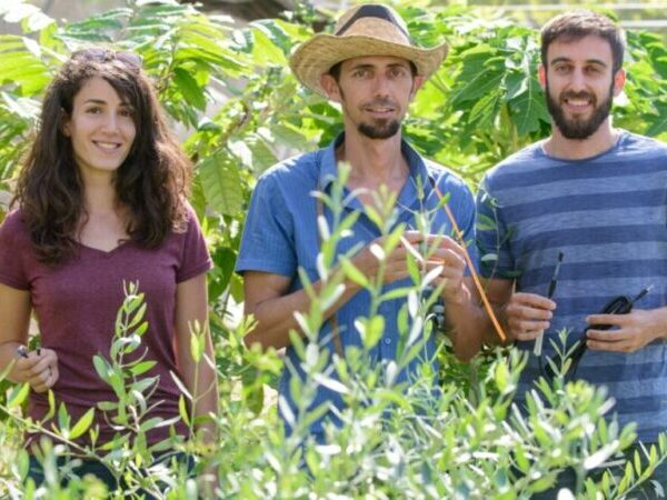 El futuro de la agricultura está en el desierto de Israel