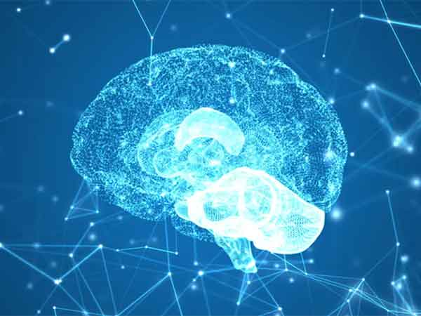 el futuro del cerebro