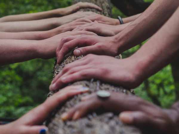 Para el cerebro, cooperar es la mejor forma de tomar decisiones