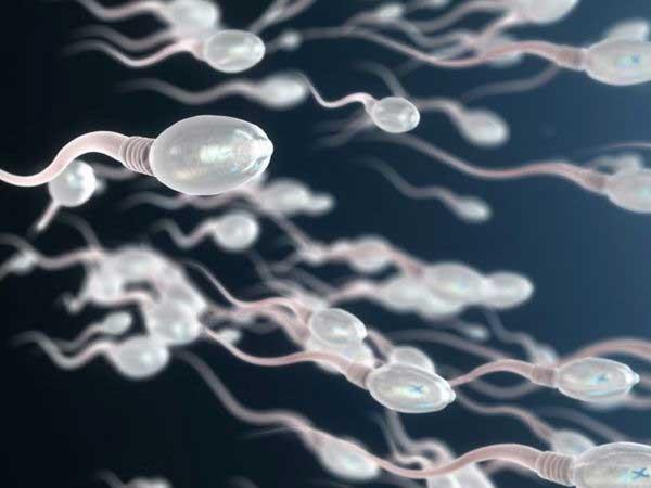 El efecto de los químicos en nuestro sistema reproductivo amenaza la supervivencia humana