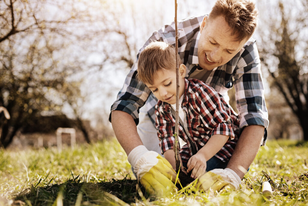 Father planting tree with son.