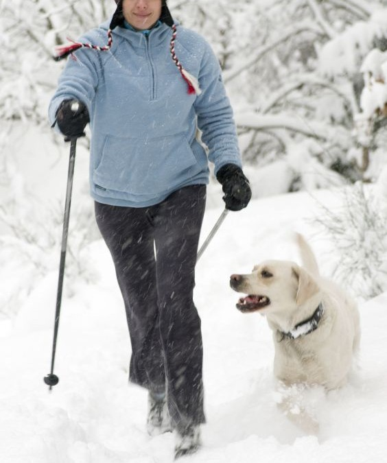 8 Great Winter Workouts to Try