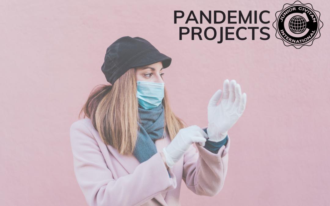 Pandemic Projects: Sandalwood High School