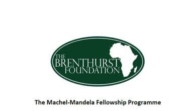 Photo of Machel-Mandela Fellowship Programme 2019