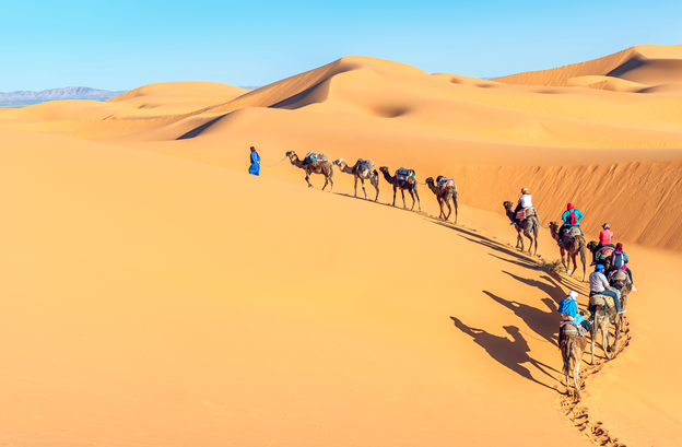 Adventure ideas for your next holiday to Africa