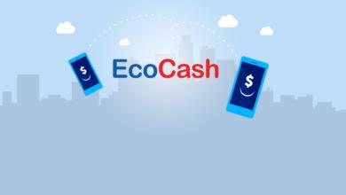 Photo of EcoCash Bars Agents Whose Accounts Show Suspicious Activities