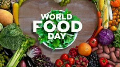 Photo of World Food Day and the Zimbabwean situation.