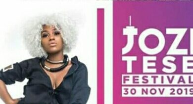 Photo of JoziTese fest on the cards.