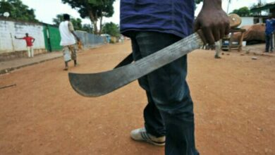 Photo of New legislation to curb machete attacks in Zimbabwe.