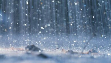 Photo of Weather alert: Heavy rains, thunderstorms expected this week.