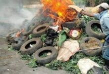 Photo of Police burn vegetables enroute to the market