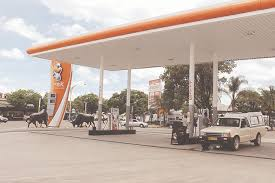 Photo of Fuel crisis worsens.