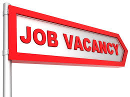 Photo of Finance assistant urgently wanted
