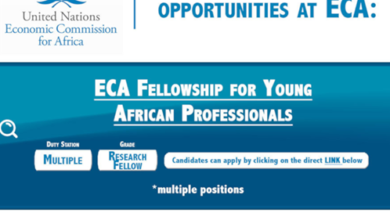 Photo of The United Nations ECA Fellowship 2019