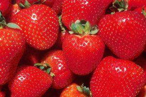 Shandon Strawberry Festival Butler County Ohio
