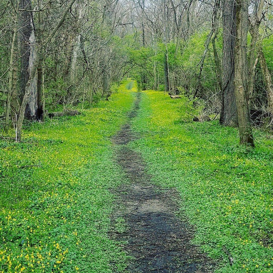 Woodsdale Park. Trenton, Ohio. Butler County