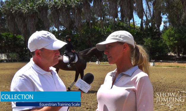 Equestrian Training Scale: Collection – Video