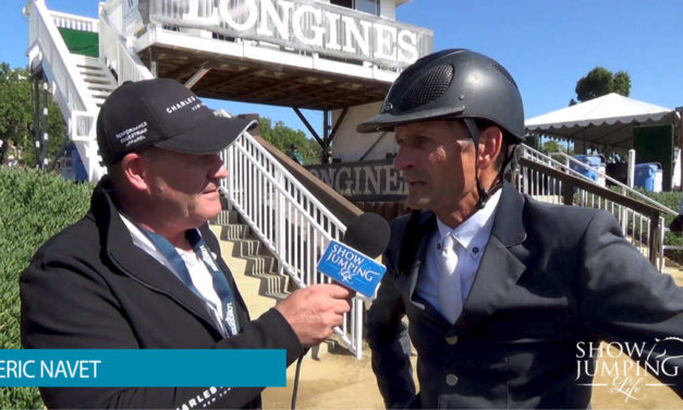 How To Ensure Your Horse Peaks For An Important Competition