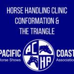 Horse Handling Clinic