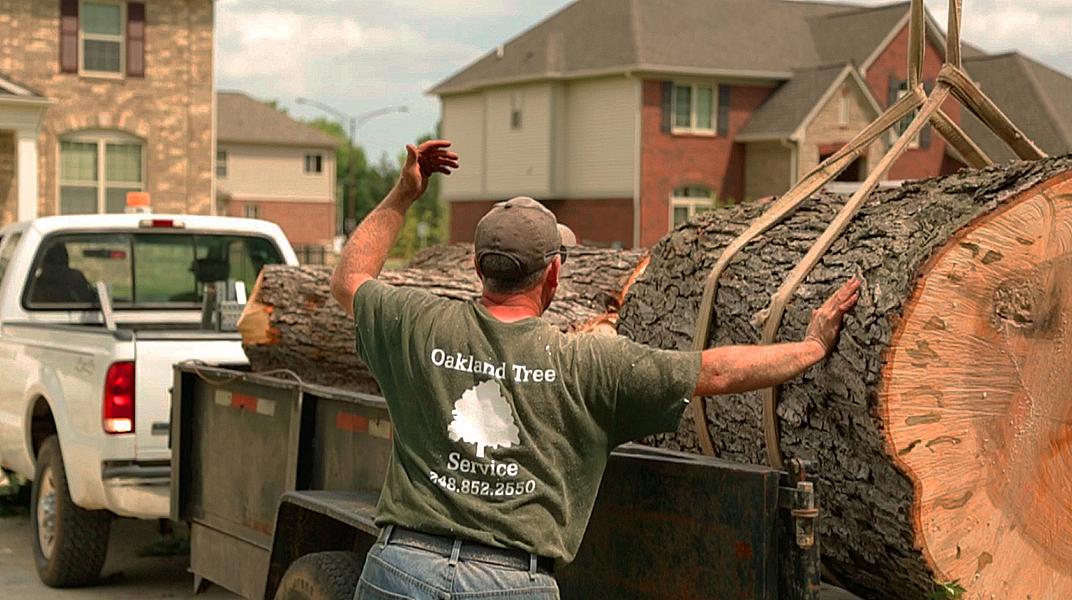 oaklandtreeservicemarkguiding2