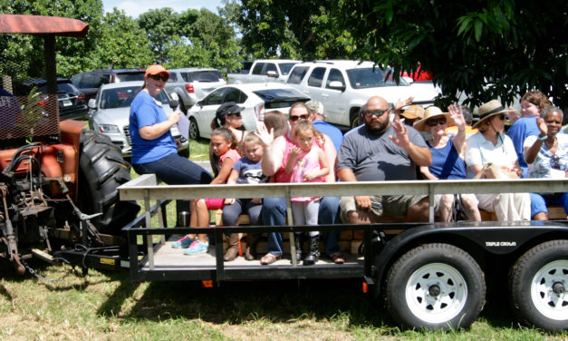 Are you hosting farm tours this summer? Florida Food & Farm wants to know