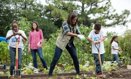 White House Kitchen Garden: Michelle Obama's Edible Legacy (Part 1)