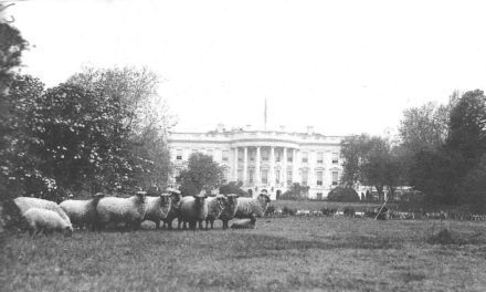 White House Gardens: Eight Offbeat Things You May Not Know