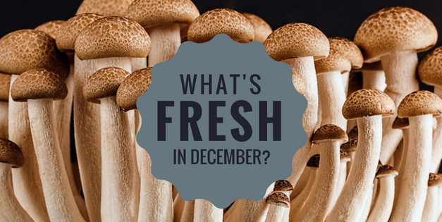 What's fresh in Florida in December?
