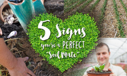 Five Signs You Might Be the Perfect 'Soil Mate'