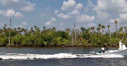 SB 816 asks SFWMD to control Lake Okeechobee discharges