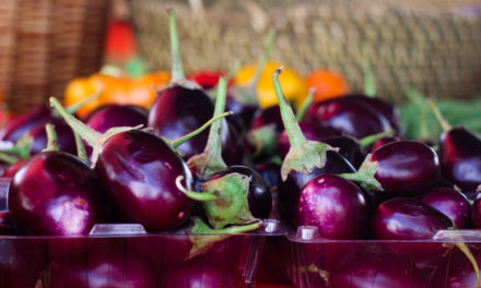 Five fun facts about eggplants (they're high in nicotine, relatively speaking)