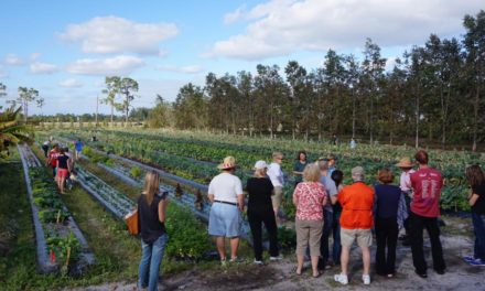 Farm tours a great way to learn about, enjoy agriculture