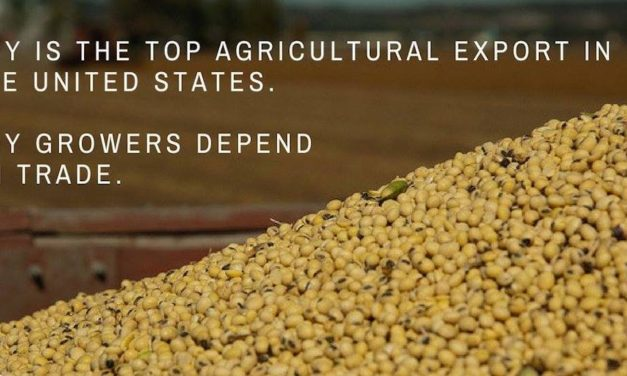 Soybean grower wants no government handout