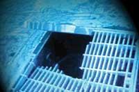 Broken drain cover