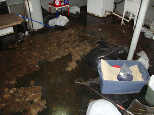 Service to remove water or sewage from your Armonk NY Home