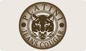 logo5_platini