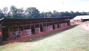 stalls2