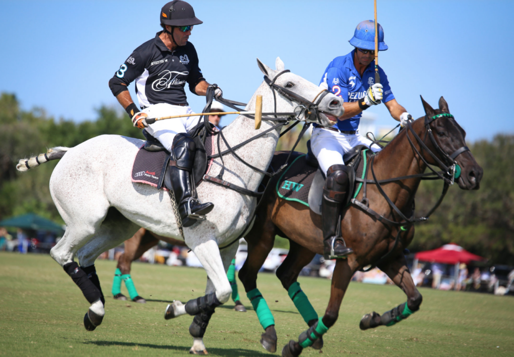 Windsor Polo Charity match takes place on Saturday, February 15.   What to wear.