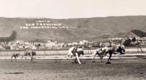 The Baden Kennel Club opened in 1933 and closed in 1937.