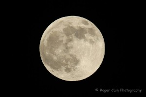 The Full Moon tonight caught the attention of many neighbors and captured by South City Photographer ROGER CAIN