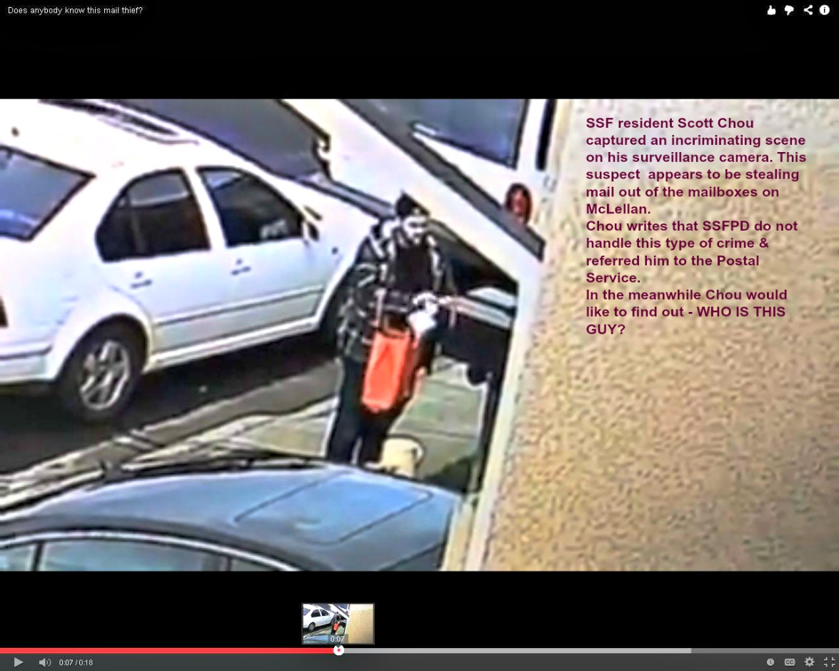 Suspected mail thief hitting homes in Buri Buri- Promenade neighborhood.
