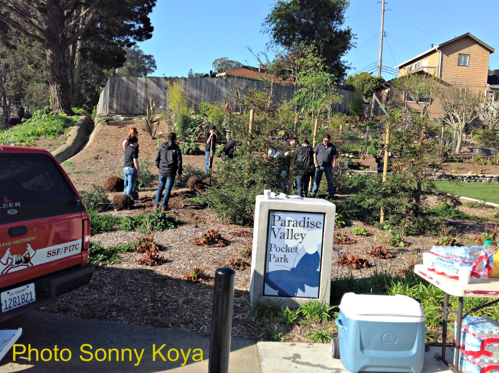 Paradise Valley Pocket Park just received a major renovation by our SSF Parks & Rec & Public Works Depts.  Photo: Sonny Koya