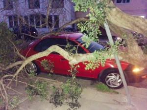 High winds caused this tree to fall on top of a car between Magnolia and Four Lane in SSF Photo: Olga Ortega