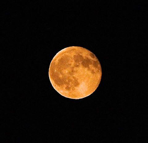 The Sturgeon Moon Photo credit: Nicholas Vejmola Freelance Photography