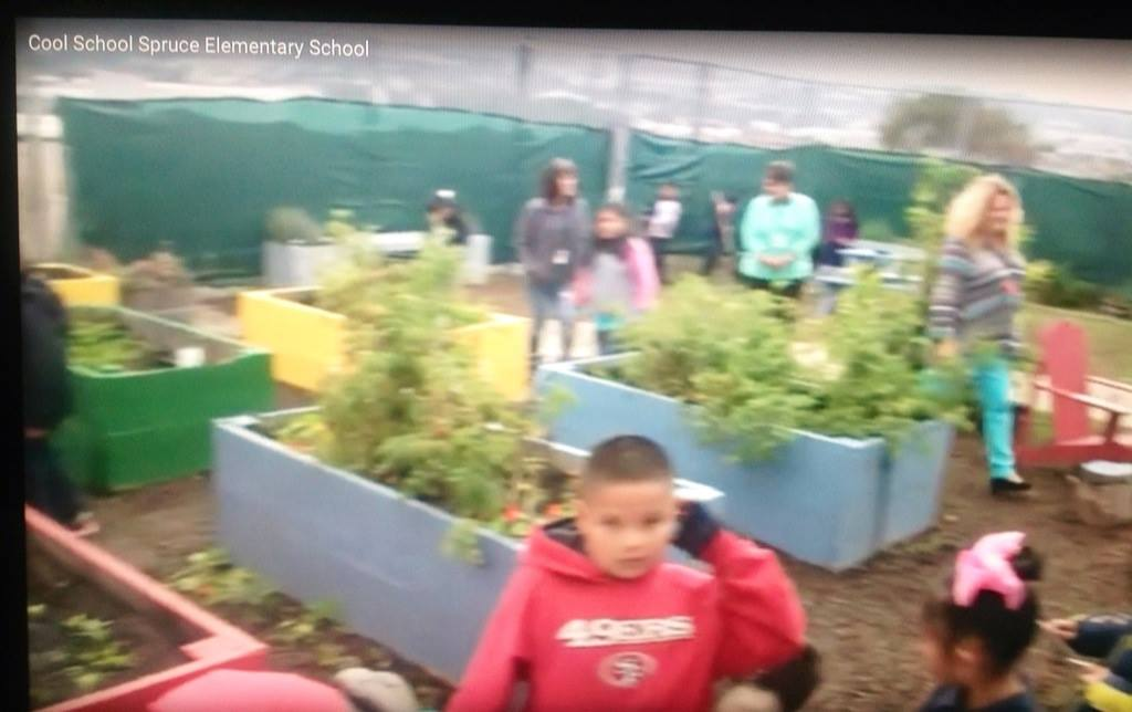 The students spend 2 hours a week in the garden Photo: KPIX